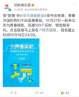 十月大动作 华为千元高能旗舰将发布!