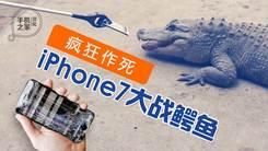 [汉化] 疯狂作死 iPhone 7大战鳄鱼