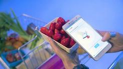 长虹H2手机  一扫即可知道水果的养分