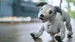 索狗复活 索尼发布自主娱乐机器狗AIBO