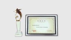 践行领先标准 努比亚打造金牌客户服务