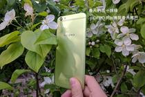 春天的那一抹绿 OPPO R9s捕捉春天尾巴