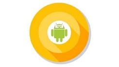 谷歌将出测试计划 Android 8即将公测