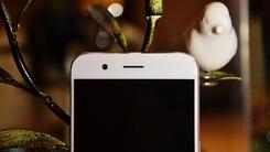 颜值与实力兼备 这些手机让你欲罢不能