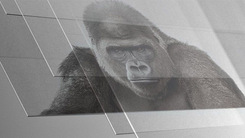 手机玻璃不止于康宁大猩猩的那些事