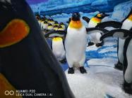 打卡国内最极地馆 带对摄影装备是关键