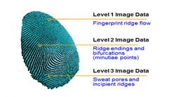 终于!三星S10采用高通第三代超声波屏幕指纹技术