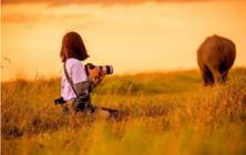 与摄影女神江一燕相约非洲 她用华为P30 Pro带你体验超美大自然
