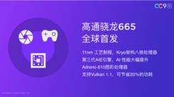 全球首发骁龙665,小米CC9e王者荣耀实测帧率稳定