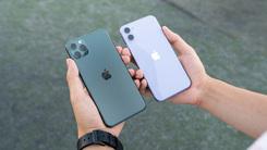 唯二溢价的两个颜色 iPhone 11/11ProMAX对比图赏