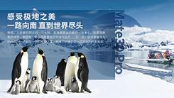 感受极地之美 HUAWEI Mate 30 Pro南极之旅