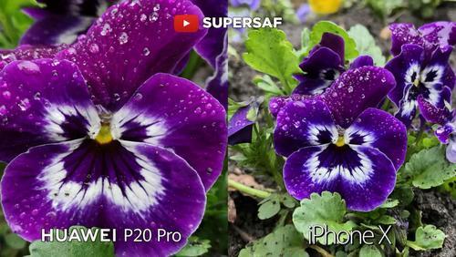华为p20pro,iphonex拍照实战对比图片