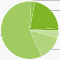 Jelly Bean占有增50% 安卓装机4.8亿台