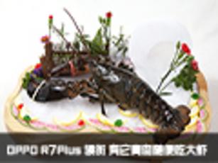 OPPO R7Plus领衔 有它青岛随便吃大虾