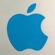蓝苹果现身 iPad Mini2外壳曝光