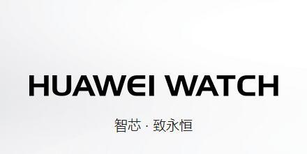 智芯-致永恒 HUAWEI WATCH